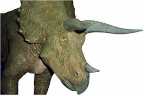 Dagtochtjes - Kunsthal Rotterdam - Dinosaurussen bekijken